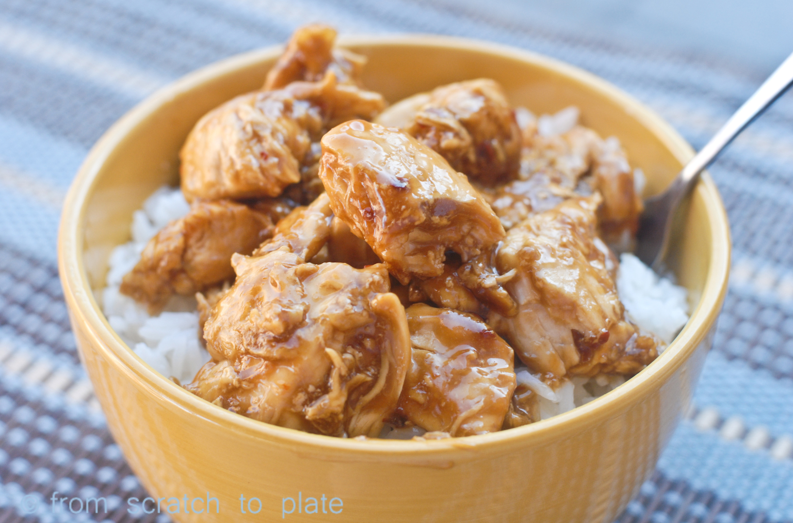 Bourbon Street Chicken Soy Free Fromscratchtoplate